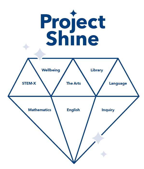Project shine new