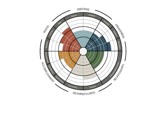 flourishing wellbeing graph